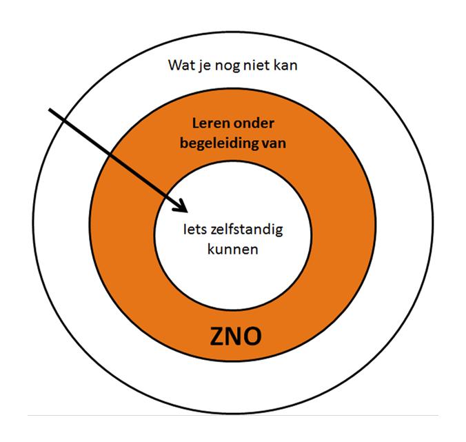 Over Ons | Sportschool Proximal Zone Hoorn
